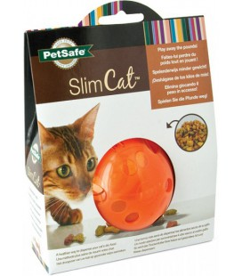 SLIM CAT ORANGE