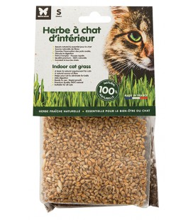 HERBE A CHAT A SEMER S