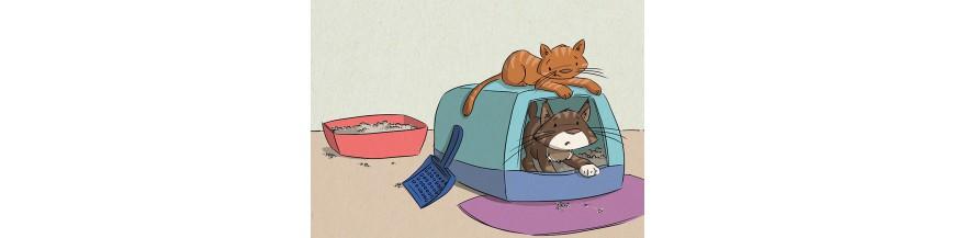 Katzentoiletten